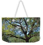 Bok Tower Gardens Oak Tree Weekender Tote Bag
