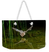 California Leaf-nosed Bat At Pond Weekender Tote Bag