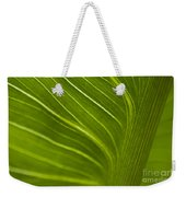 Calla Lily Stem Close Up Weekender Tote Bag