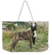 Canary Dog Weekender Tote Bag