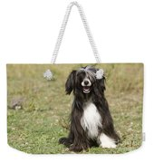 Chinese Crested Dog Weekender Tote Bag