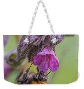 Common Carder Bee Weekender Tote Bag