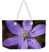 Common Hepatica Weekender Tote Bag