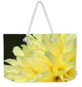 Dahlia Named Kelvin Floodlight Weekender Tote Bag