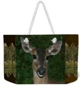 Deer Wild Animal Portrait For Wild Life Fan From Navinjoshi Costa Rica Collection Weekender Tote Bag
