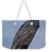 Double Crested Cormorant Weekender Tote Bag
