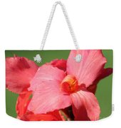 Dwarf Canna Lily Named Shining Pink Weekender Tote Bag