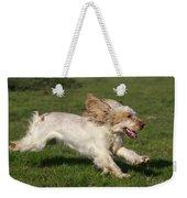 English Cocker Spaniel Weekender Tote Bag