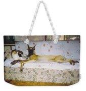 Great Dane And Calico Cat Weekender Tote Bag