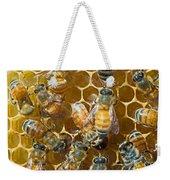 Honey Bees In Hive Weekender Tote Bag