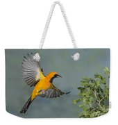 Hooded Oriole Weekender Tote Bag