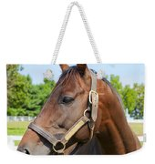 Horse On A Farm  Weekender Tote Bag