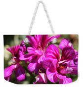 Ivy Geranium Named Contessa Purple Bicolor Weekender Tote Bag