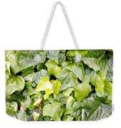 Ivy Weekender Tote Bag by Les Cunliffe