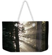 Jedediah Smith Redwoods State Park Redwoods National Park Del No Weekender Tote Bag
