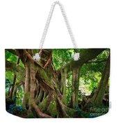 Kipahulu Banyan Tree Weekender Tote Bag