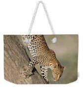 Leopard Panthera Pardus On Tree, Ndutu Weekender Tote Bag