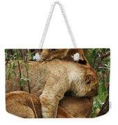 Lion Cubs On The Masai Mara  Weekender Tote Bag