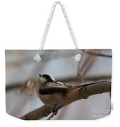 Long-tailed Tit Perched On Twig Weekender Tote Bag