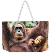 Mother And Baby Orangutan Borneo Weekender Tote Bag