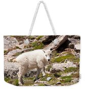 Mountain Goat Kid On Mount Evans Weekender Tote Bag