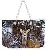 Mule Deer In Snow Weekender Tote Bag