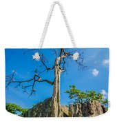 Old And Ancient Dry Tree On Top Of Mountain Weekender Tote Bag