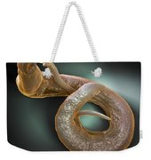 Parasitic Worm Schistosoma Weekender Tote Bag