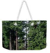 Picnic With The Giants Weekender Tote Bag