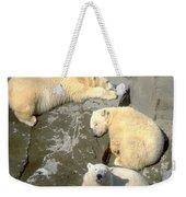 3 Polars Weekender Tote Bag