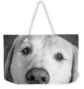 Portrait Of A Boxer Dog And Golden Weekender Tote Bag