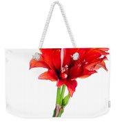 Red Amaryllis Weekender Tote Bag