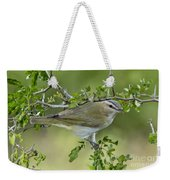 Red-eyed Vireo Weekender Tote Bag