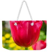 Red Tulips On The Green Background Weekender Tote Bag