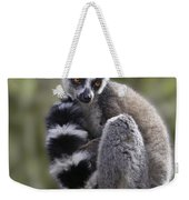 Ring-tailed Lemur Weekender Tote Bag