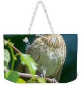 Rose-breasted Grosbeak Weekender Tote Bag