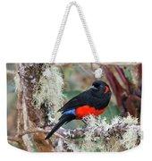 Scarlet-bellied Mountain-tanager Weekender Tote Bag