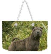 Shar Pei Dog Weekender Tote Bag
