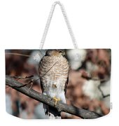 Sharp-shinned Hawk 2 Weekender Tote Bag