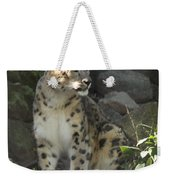 Snow Leopard On The Prowl Weekender Tote Bag