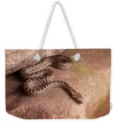 Spotted Python Antaresia Maculosa Weekender Tote Bag