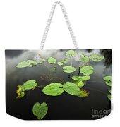 Stillness Weekender Tote Bag by Scott Pellegrin