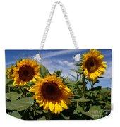 3 Sunflowers Weekender Tote Bag