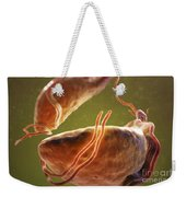 Trichomonas Vaginalis Weekender Tote Bag