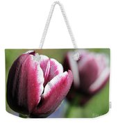Triumph Tulip Named Jackpot Weekender Tote Bag by J McCombie