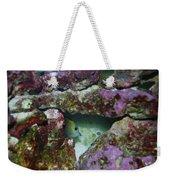 Tropical Fish In Cave Weekender Tote Bag