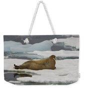 Walrus Resting On Ice Floe Weekender Tote Bag
