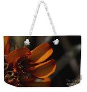 Wiliwili Flowers - Erythrina Sandwicensis - Kahikinui Maui Hawaii Weekender Tote Bag