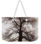Winter Tree In Fog Weekender Tote Bag