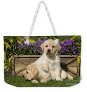 Yellow Labrador Puppies Weekender Tote Bag